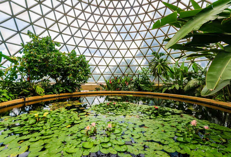 Landscape Design Brisbane - Tristan Smith Landscape Designs