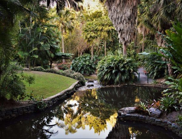 Brisbane Botanical gardnes design