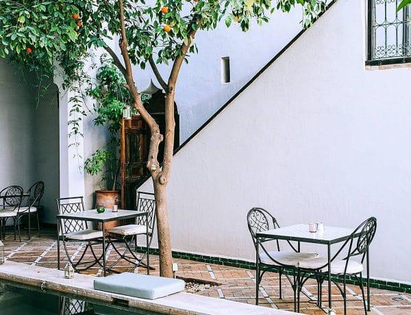courtyard small garden