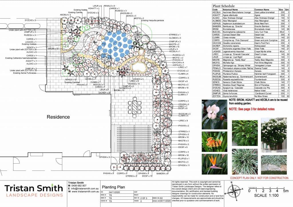 Forest Lake landscape concept planting plan